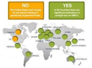 20120614-GMO-labeling-map.jpg.492x0_q85_crop-smart