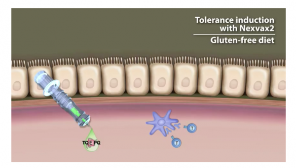 The Vaccine For Celiac?